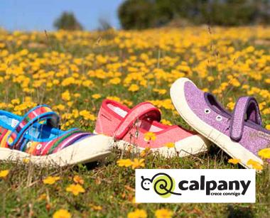http://www.calpany.cl/